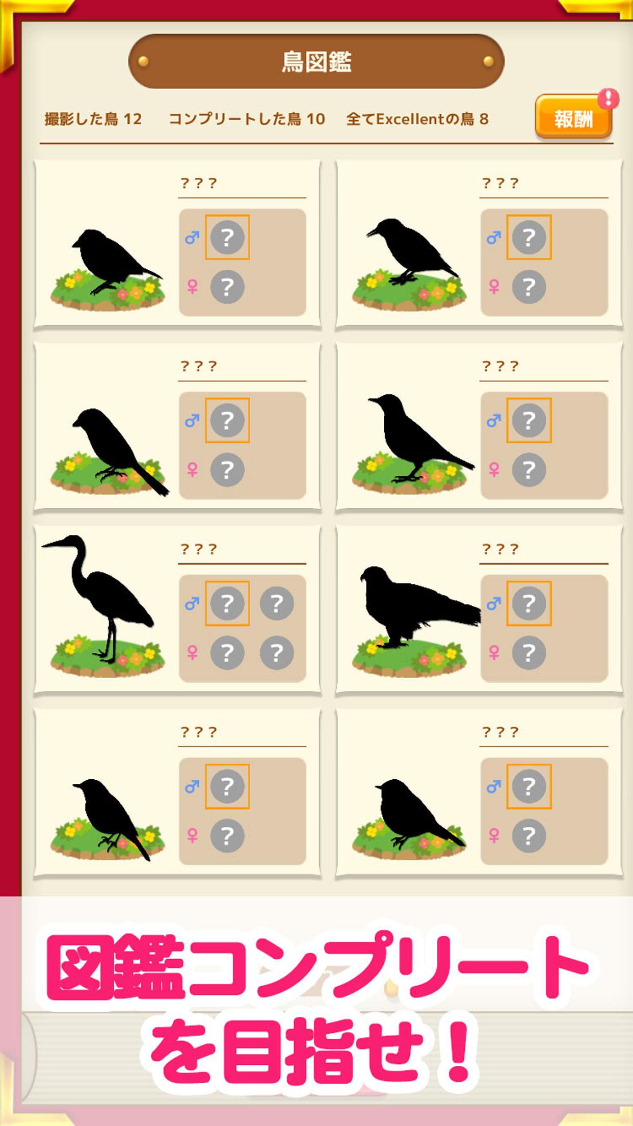 鳥マスター! 鳥図鑑