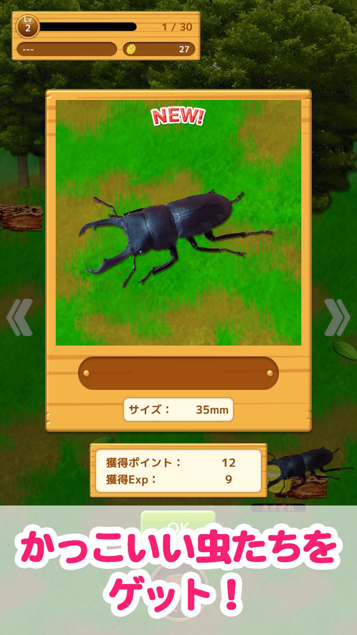 虫コレクション 虫ゲット