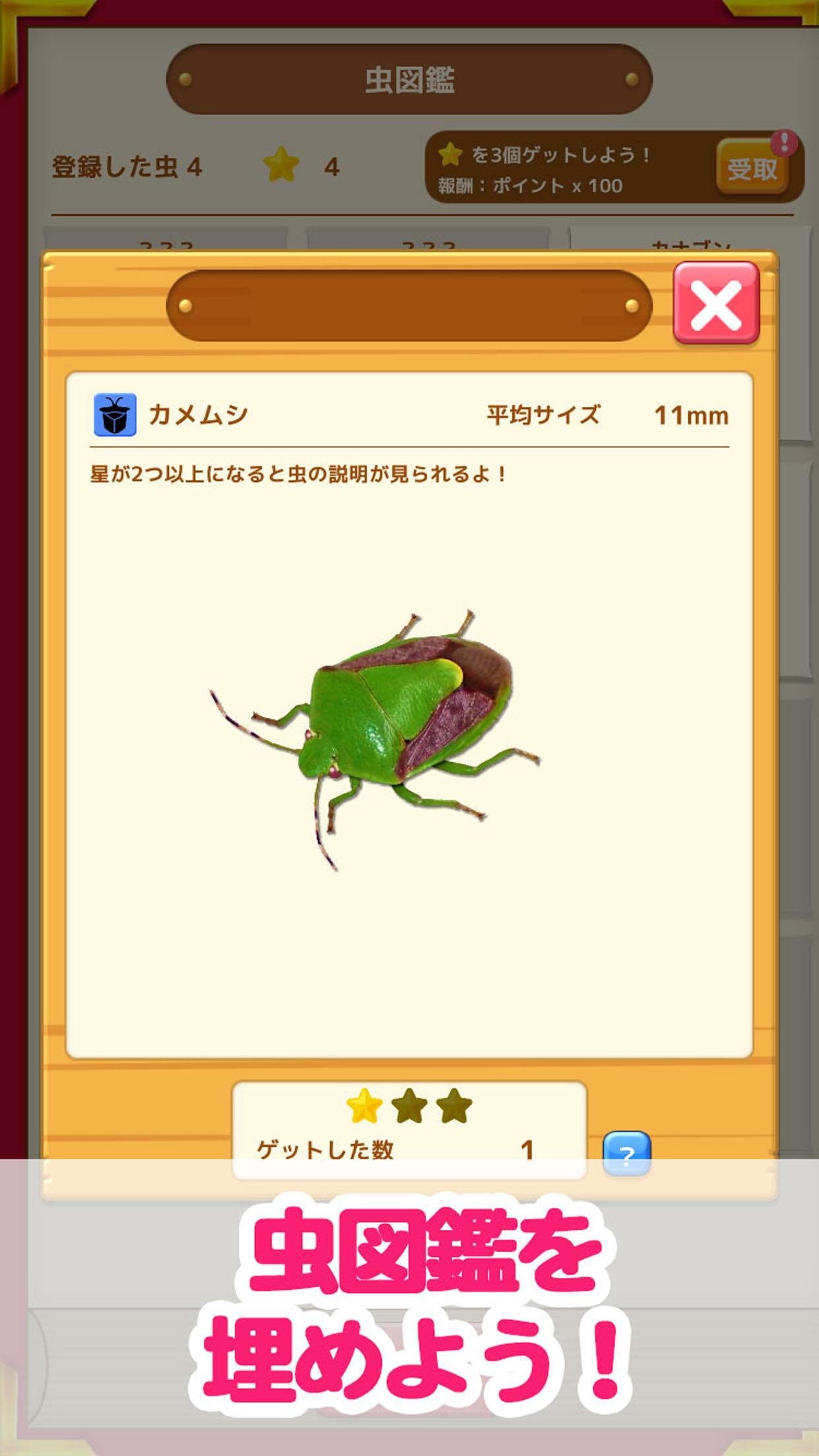 虫コレクション 虫図鑑